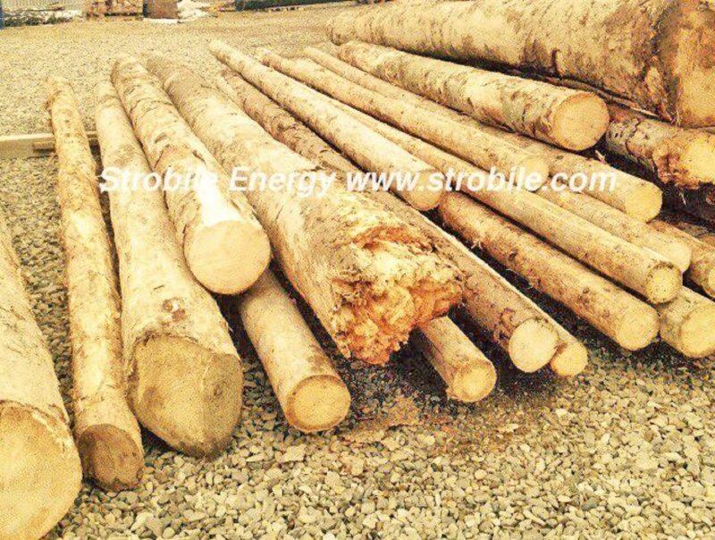 Αυτή είναι η πρώτη ύλη που χρησιμοποιείται για την παραγωγή των πέλλετ ξύλου Virgin Wood Pellets . Μετά την παράδοση από τα βουνά, οι διευθυντές ποιότητας αποφασίζουν εάν η πρώτη ύλη πληροούν τις απαιτήσεις των εσωτερικών προτύπων ποιότητας.